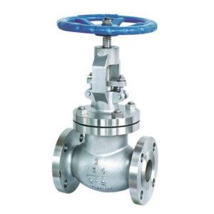 globe valve SS