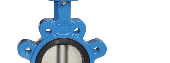 Lug Manual Butterfly valve-2